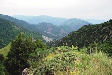 جنگل ملی خسرو ارمنستان