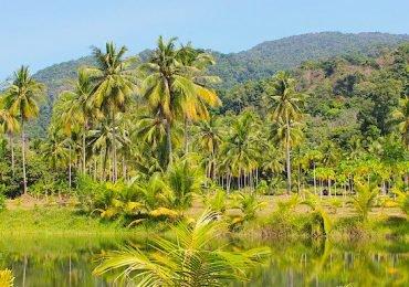 سفر به تایلند در سال 2018
