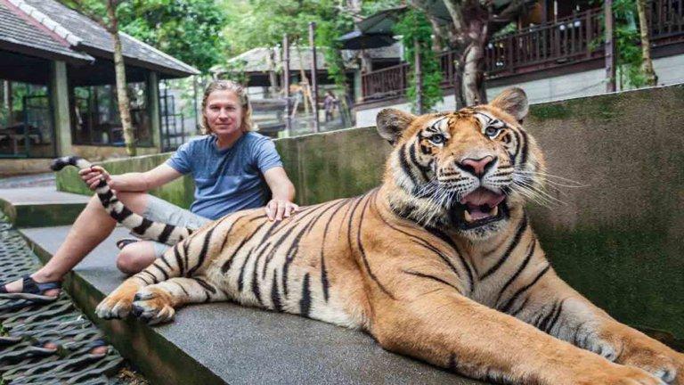باغ وحش تایگر کینگدم پوکت