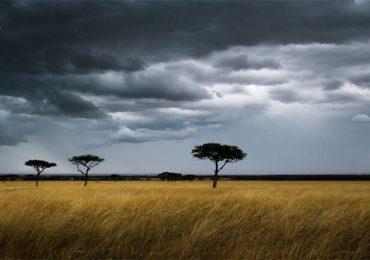 آب و هوای کنیا