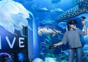 VRZOO Dubai Aquarium